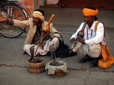 Γητευτές φιδιών στους δρόμους του Δελχί