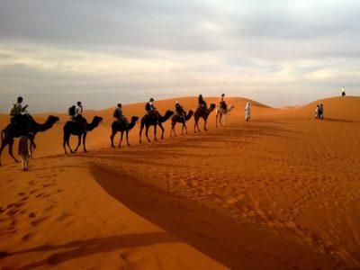 India-Rajasthan-Desert Safari