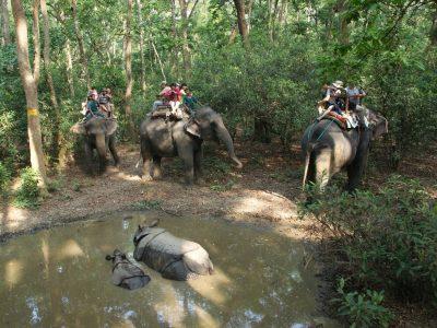 Nepal-Nathional Park Chitwan